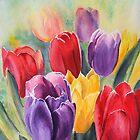 Tulip Rainbow by Ruth S Harris