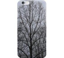 Silhouette  iPhone Case/Skin