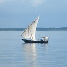 Fishing on the Indian Ocean by susannamike