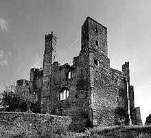 Wingfield Manor: Derbyshire by Steven  Lee