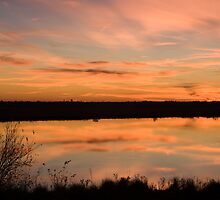Natchitoches Sunset by Bonnie T.  Barry