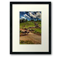 Cattle train Framed Print