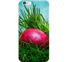 Red Easter egg in the grass iPhone Case/Skin