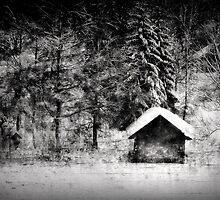Another hut at the lake by Kurt  Tutschek