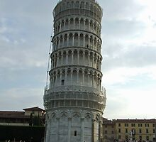 Leaning Tower of Pisa by David Fulton