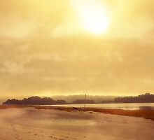 Misty Day by capecodart