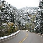 Driving Threw Spearfish Canyon - Winter by WILDBRIMOWILDMAN