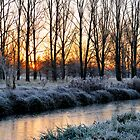 Frosty Sunrise by Lea Valley Photographic