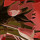 Abstract 2....................................Most Products by Fara