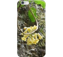 Wonga vine with Blackthorn iPhone Case/Skin