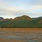 Denali Wonderland by dmark3