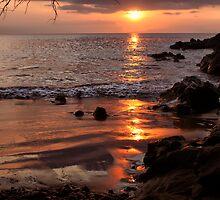 Hawaiian Sunset by Teresa Zieba