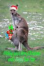 Merry Christmas and a 'Hoppy' New Year by Ian Berry