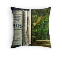lose one's way Throw Pillow