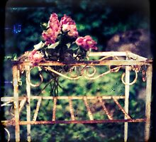 nothing lasts forever by aglaia b