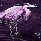 In The Pink by Trevor Kersley