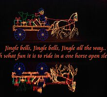 One horse open sleigh by trwphotography