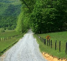 Country Road by dmark3