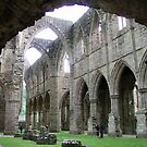 Tintern Abbey by Studio-Z Photography