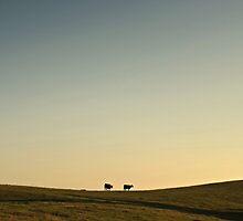 Silence by Samantha  Frey