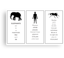 Funny fact collection _ 2 Canvas Print