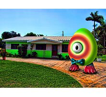 Saturated Egg Man Proud of the Lime House Photographic Print