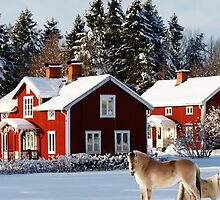old red farm houses in winter time by lensfreak