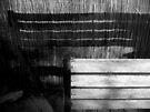 Bench & Shadow by Paul Finnegan