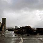 Wet Lyme Regis, Dorset UK by lynn carter