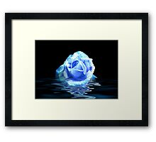 Rose #3 Framed Print