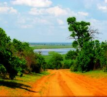 Chobe National Park, Botswana by vadim19