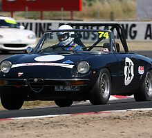 Alfa on the move by zoompix