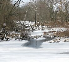 Big Darby Creek  Winter by CynLynn