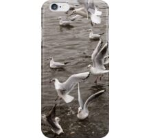 Feeding Frenzy I iPhone Case/Skin