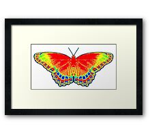 Colorful Butterfly - Red Framed Print