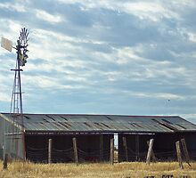 Southern Cross and Shearing Shed by Jennifer Craker
