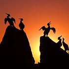 Bird sculptures, Morecambe by beanphoto