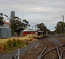 You are now arriving at St Arnaud - All Aboard by Jennifer Craker