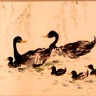 Chinese Black Duck Family by Gillian