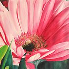Big Pink Daisy by Leslie Gustafson