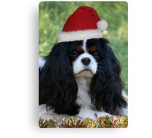 Ready For Christmas Canvas Print