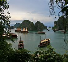 Ha Long Bay #3 (Ha Long Bay, Viet Nam) by Matthew Stewart