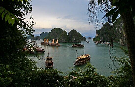 Ha Long Bay #3 (Ha Long Bay, Viet Nam) by Matthew Stewart