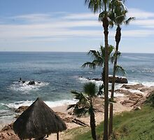 Los Cabos by kerplunk