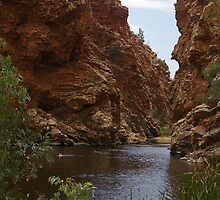 Ellery Creek Big Hole by Greg Eyre