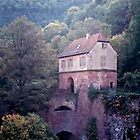 Heidelberg Castle, Germany by Monica Vanzant