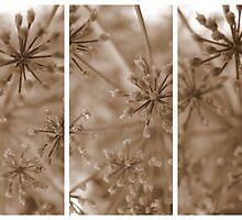 Parsley Heads - Triptych by Kitsmumma