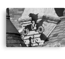 Mr. Toad's Shadow Metal Print