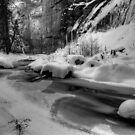 Frozen Splendor by Sue  Cullumber