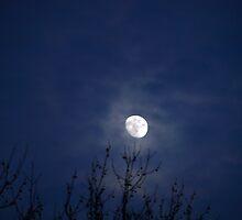 Eerie Sky by kimbarose